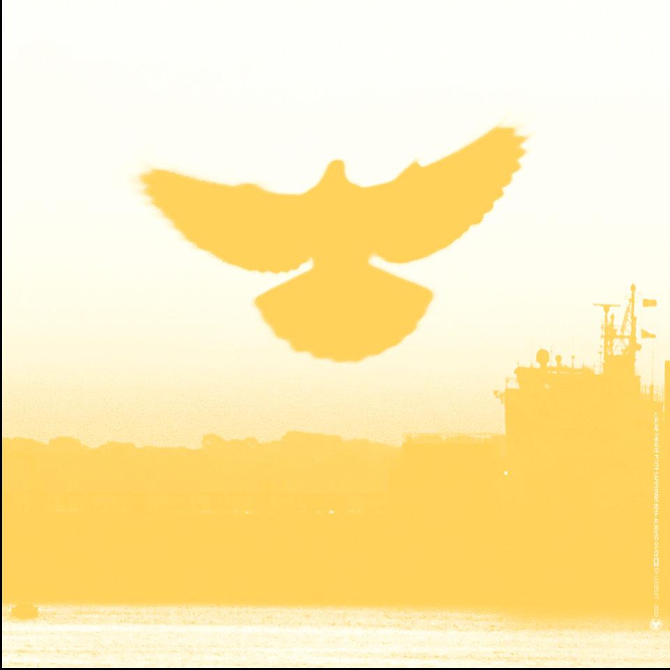 Esprit jaune de La Petite californie Bretonne