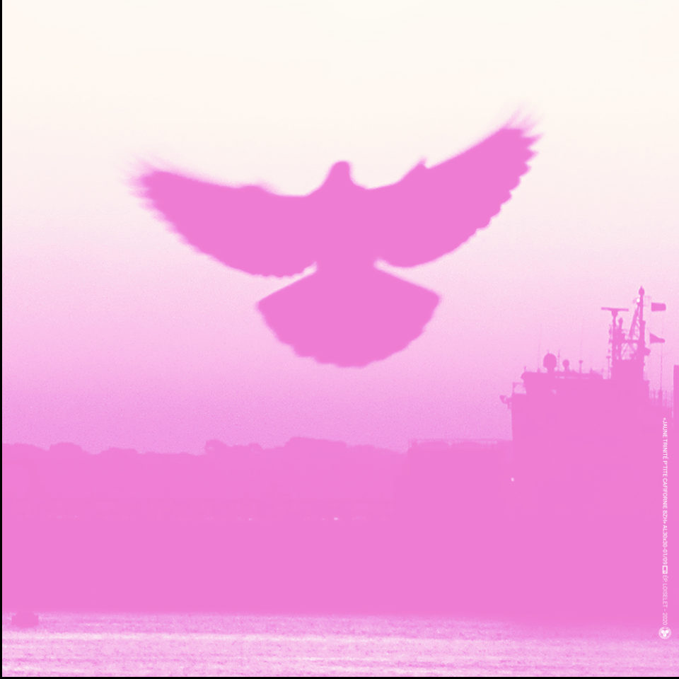 Esprit rose de La Petite californie Bretonne