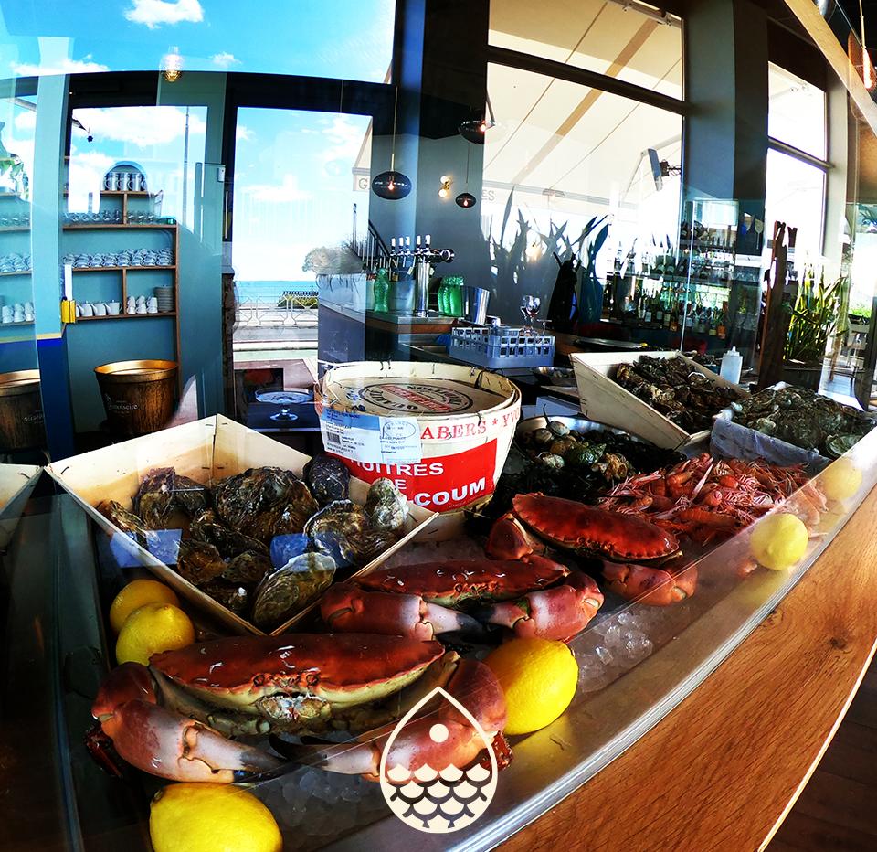 Fruits de mer au comptoir à toute heure