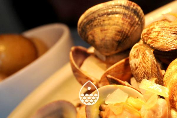 LE CAFÉ DES ÉCAILLES - La Baule Café - Restaurant fruits de mer et poissons face mer La Côte de Bœuf