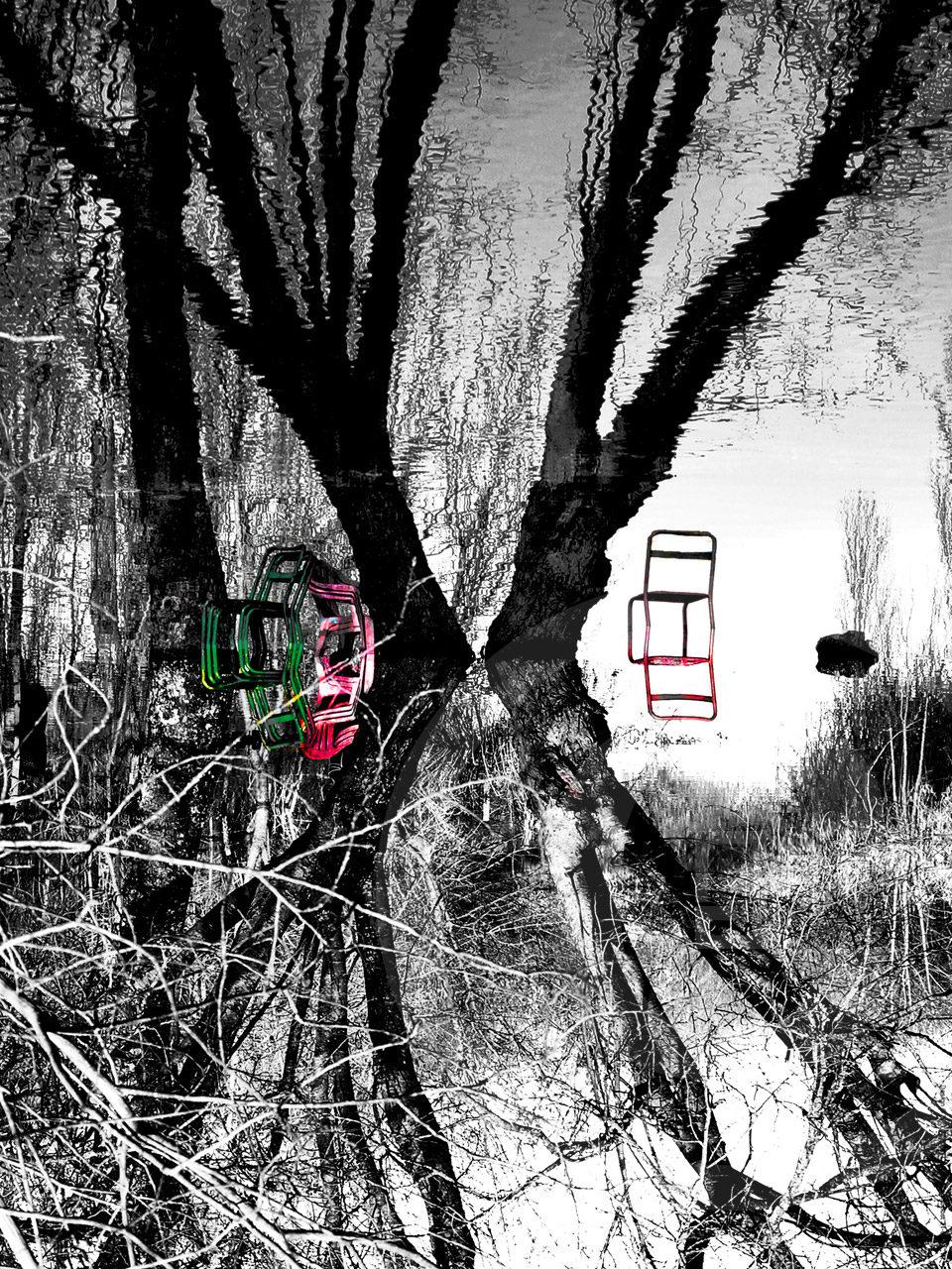 Folie Brièronne 21-03-13 Affiches et tirages d'Art